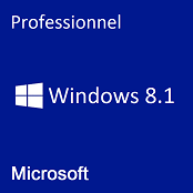 Windows 8.1 Professionnel
